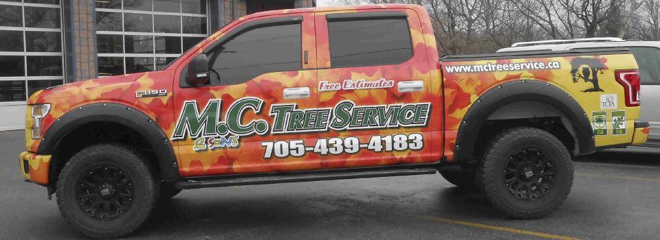 Vehicle wrap 1